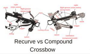 Recurve vs Compound Crossbow