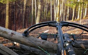 Best PSE Crossbow 2020