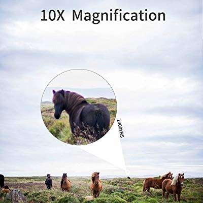 Magnification In Hunting Binoculars