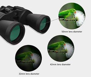 Best Hunting Binoculars 2020